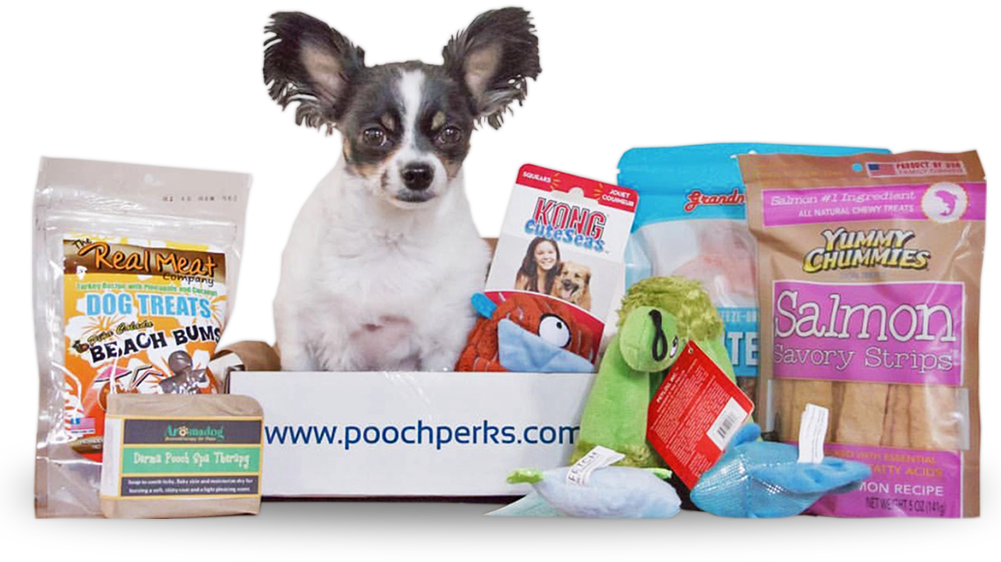 Pooch Perks Whats in The Box