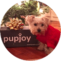 PupJoy Reviews
