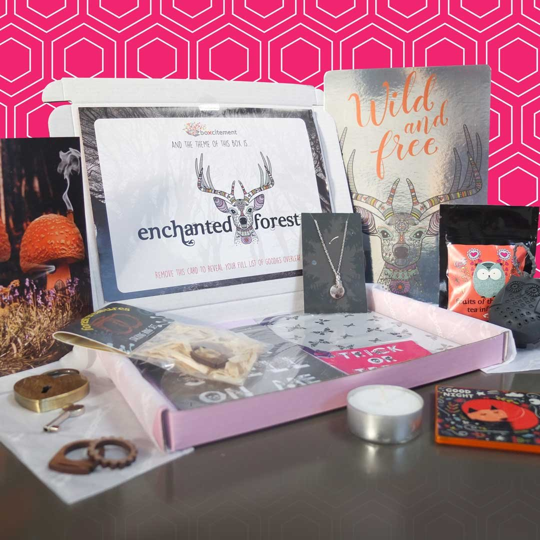 Boxcitement subscription box, UK subscription boxes, monthly mystery box, stationery subscription, gifts and jewellery, free delivery