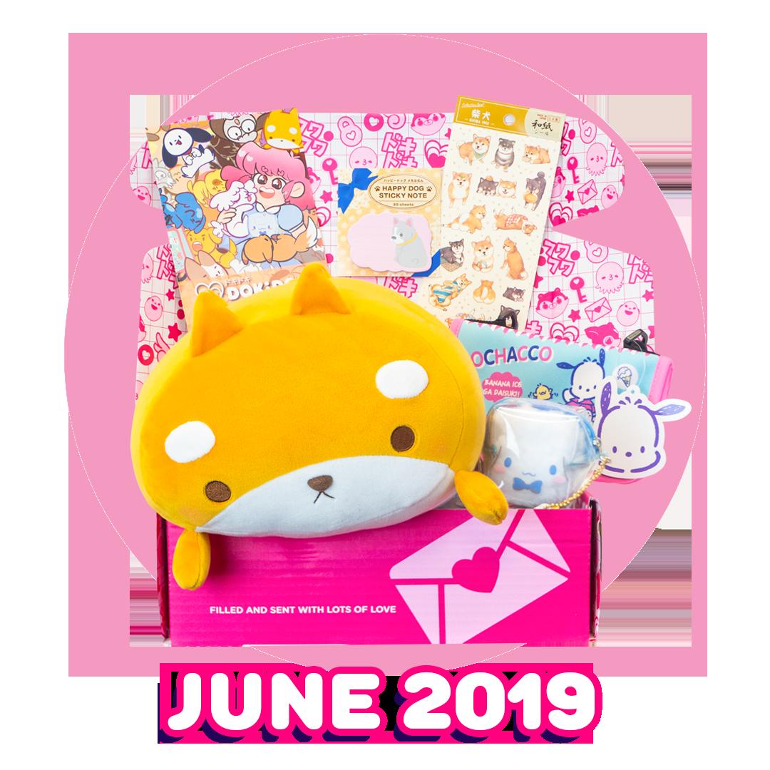 Doki Doki & Kawaii Subscription Box | Japan Crate
