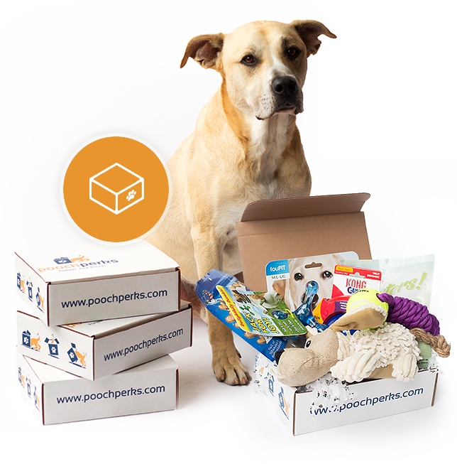 Pooch Perks Dog and Dog Subscription Box