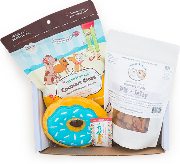 Toys Treats, chews and accessories that your dog will love