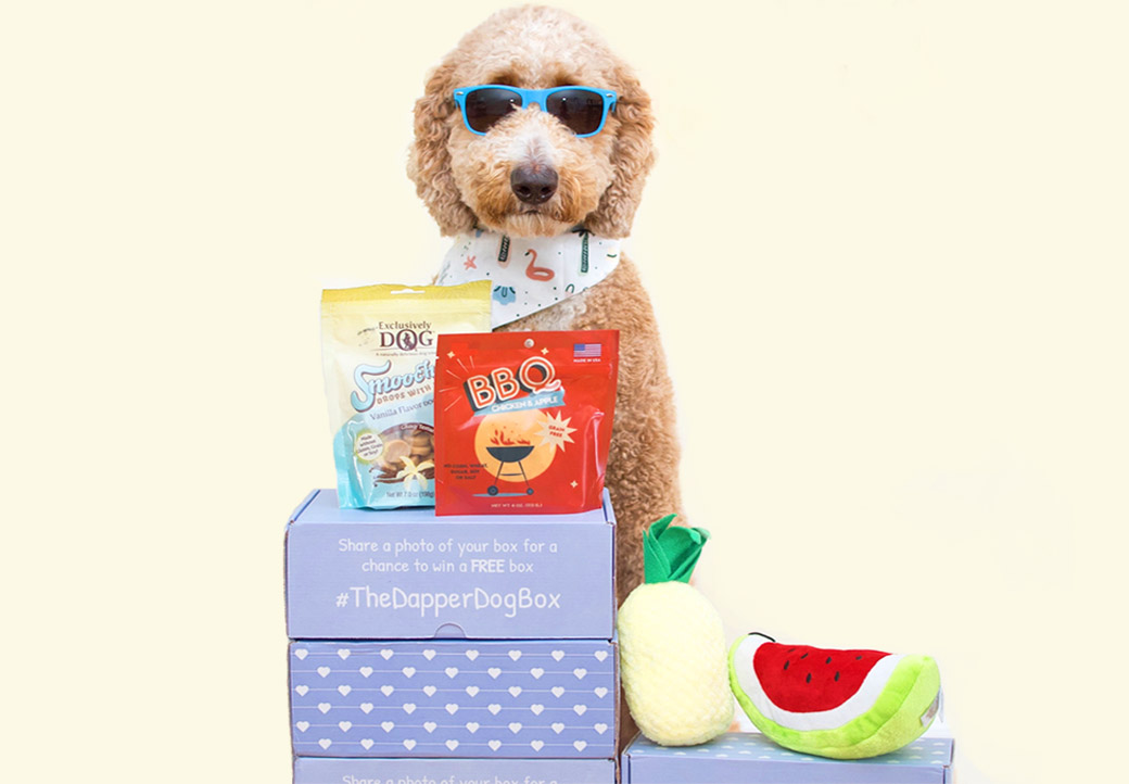 Monthly dog subscription box – dog with sunglasses on