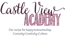Castle View Academy logo
