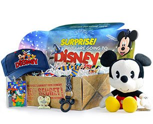 subscriptionpg_going2disneybox