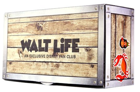Best Disney Monthly Subscription Boxes & Gift Boxes - Walt Life